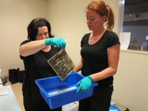 Lydia Egunnike and Dr Jo Wills cleaning water damaged photographs.
