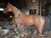 Light Horse display