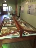 Indigenous artefacts reinstalled. Photo: Jo Wills.