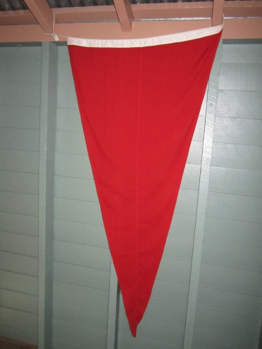 original cyclone flag.jpg