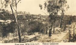 Conglomerate Range, near Wild Irish Girl, c.1930s. Image courtesy, SLQ.